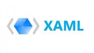Extensible Application Markup Language (XAML)